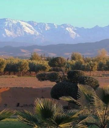 Visiter les alentours de Marrakech : Top 5