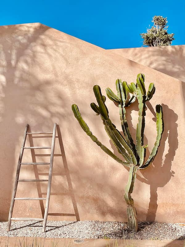 Location villa à Marrakech avec cactus