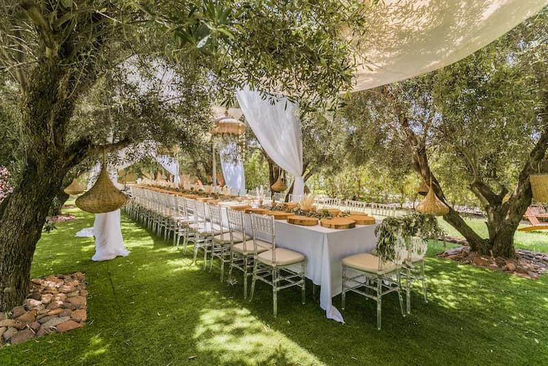 Table des invités au milieu des oliviers